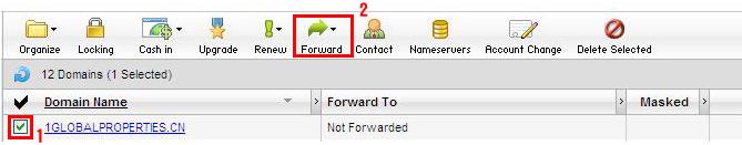 eOneNet com Online Site Builder Tutorial - Step 13 : Setup - URL Masking